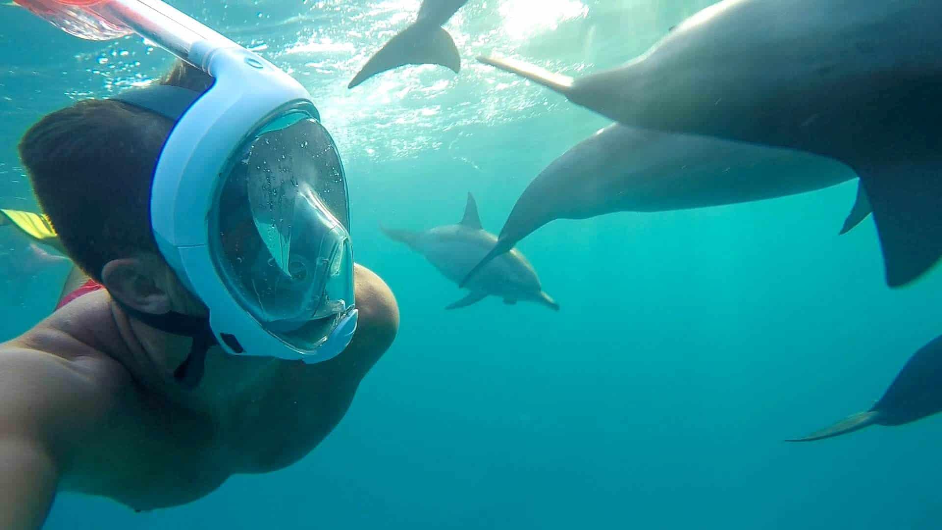 sataya reef dophin house
