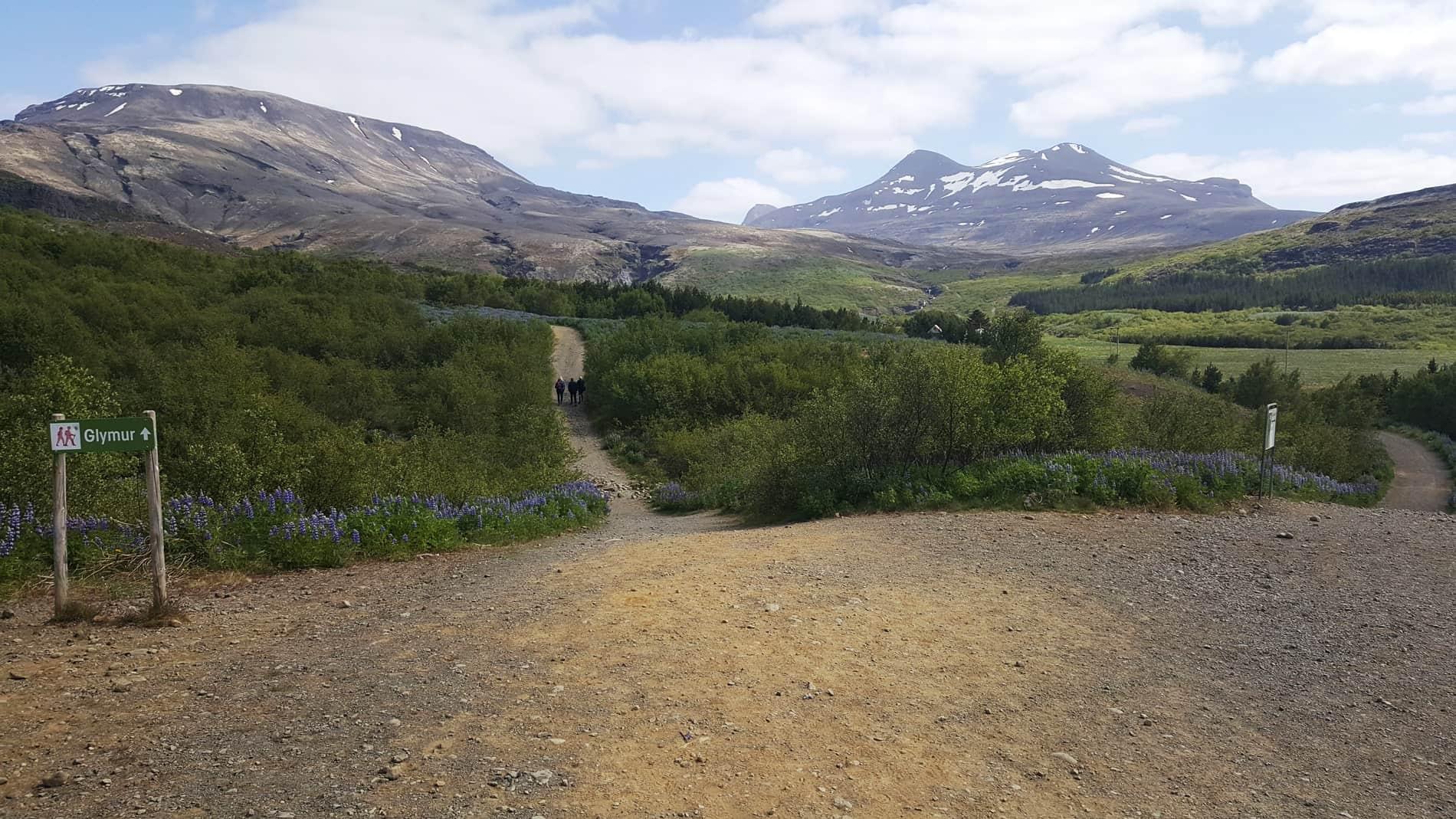 trail-to-glymur-waterfall